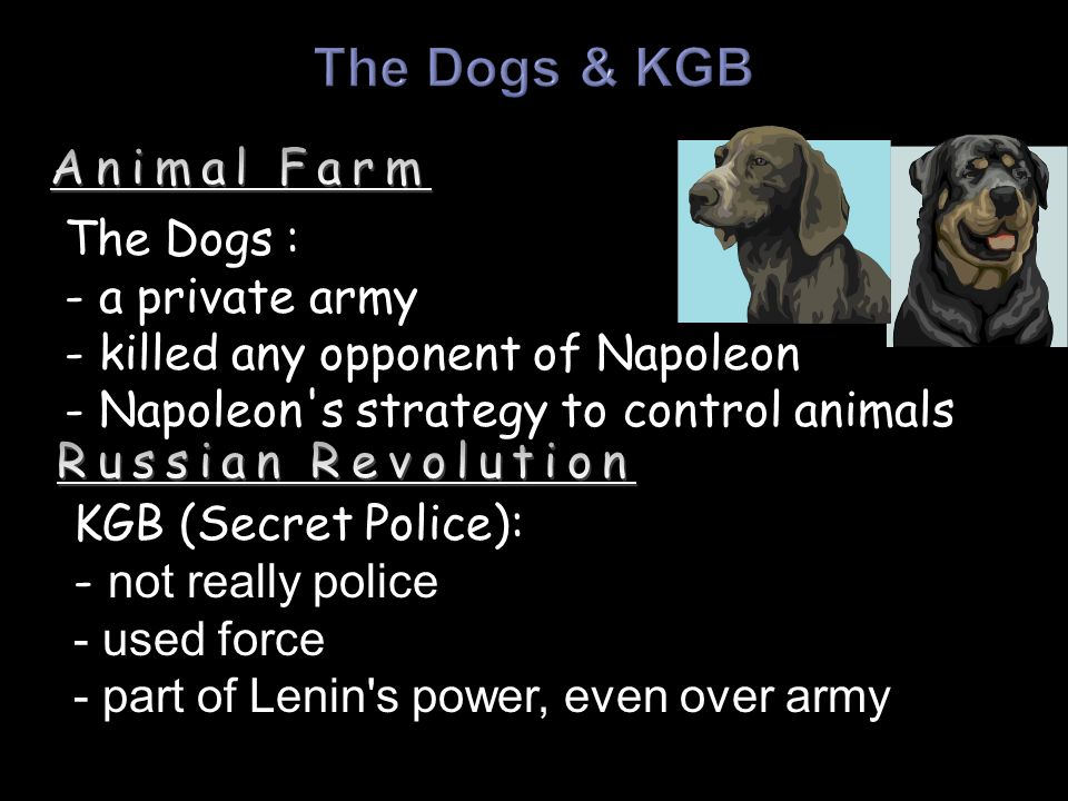 The Dogs : - a private army - killed any opponent of Napoleon - Napoleon s strategy to control animals KGB (Secret Police): - not really police - used force - part of Lenin s power, even over army