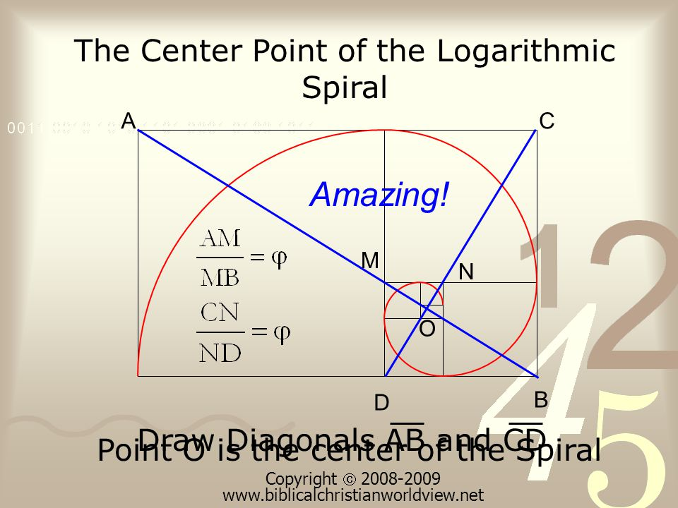 Point O is the center of the Spiral The Center Point of the Logarithmic Spiral A B C D O Draw Diagonals AB and CD Amazing.