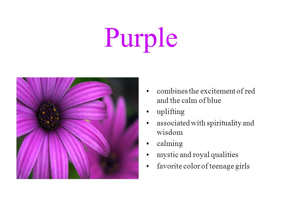 Purple combines the excitement of red and the calm of blue uplifting associated with spirituality and wisdom calming mystic and royal qualities favorite color of teenage girls