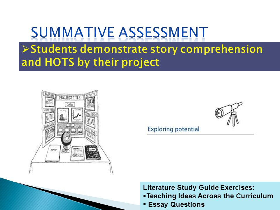 Literature Study Guide Exercises: Teaching Ideas Across the Curriculum Essay Questions Students demonstrate story comprehension and HOTS by their project