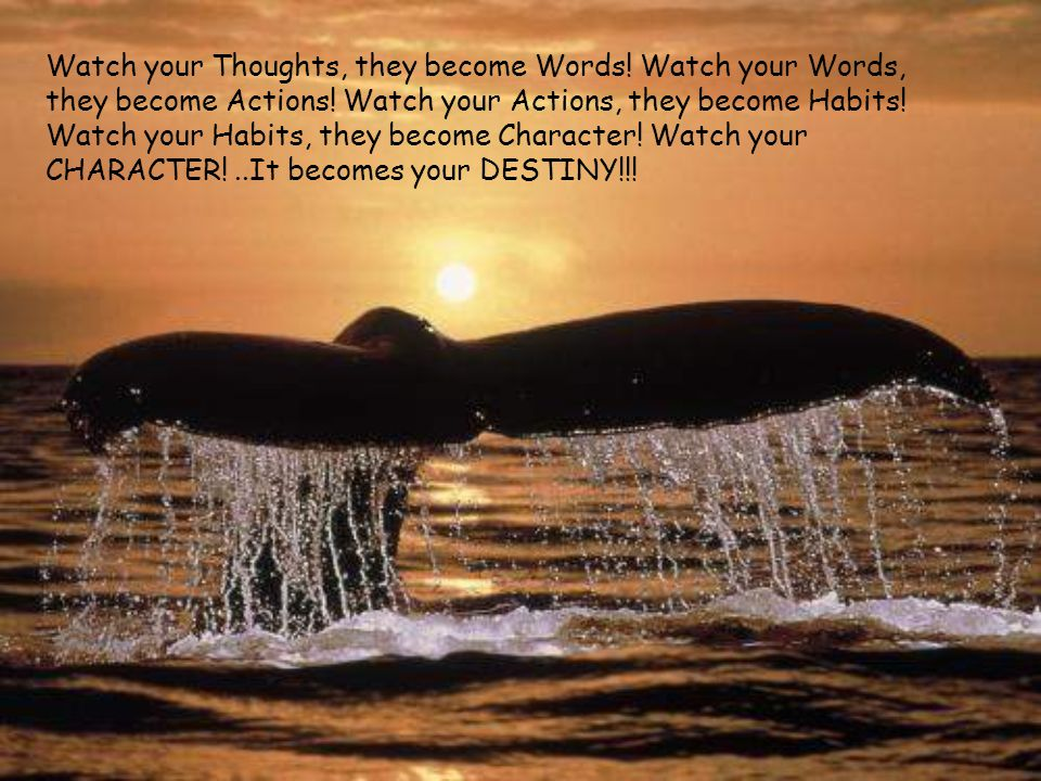 Watch your Thoughts, they become Words. Watch your Words, they become Actions.