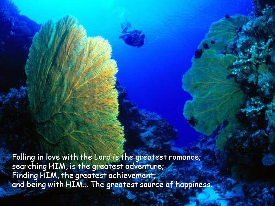 Falling in love with the Lord is the greatest romance; searching HIM, is the greatest adventure; Finding HIM, the greatest achievement; and being with HIM...