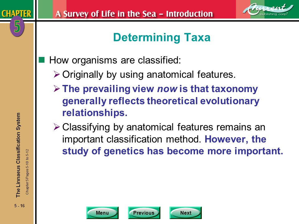 MenuPreviousNext 5 - 16 Determining Taxa nHow organisms are classified: Originally by using anatomical features. The prevailing view now is that taxon