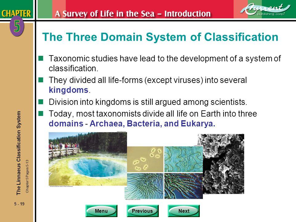 MenuPreviousNext 5 - 19 The Linnaeus Classification System The Three Domain System of Classification nTaxonomic studies have lead to the development of a system of classification.