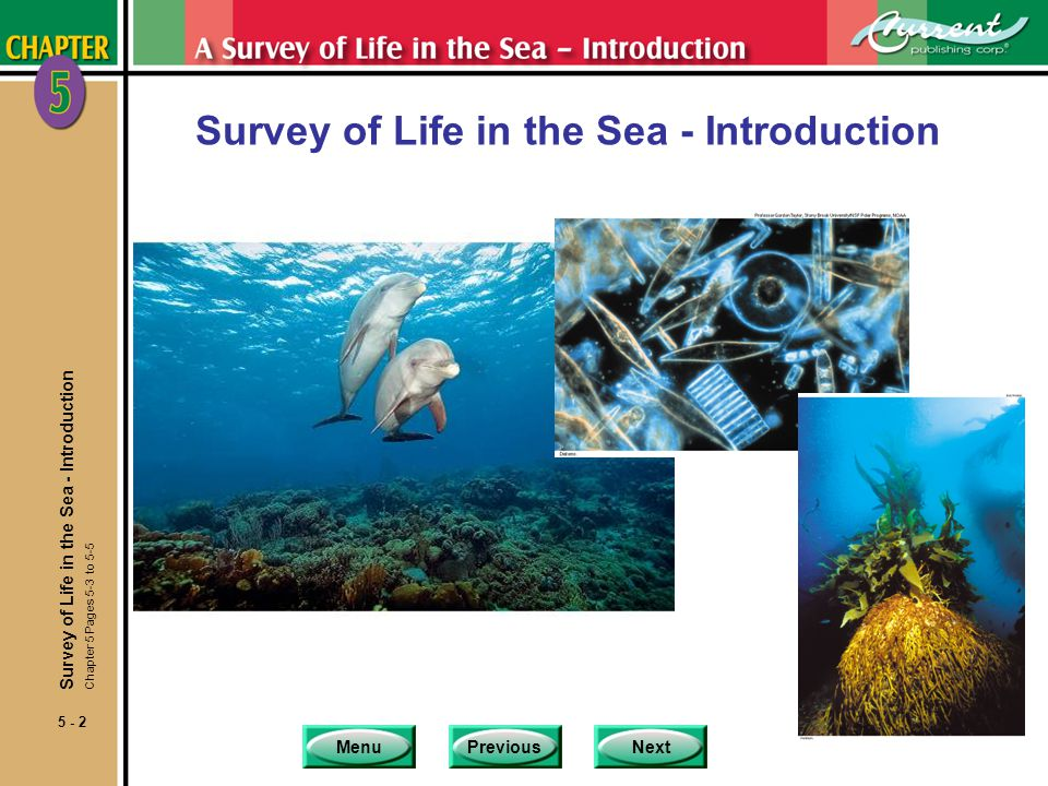 MenuPreviousNext 5 - 2 Survey of Life in the Sea - Introduction Chapter 5 Pages 5-3 to 5-5