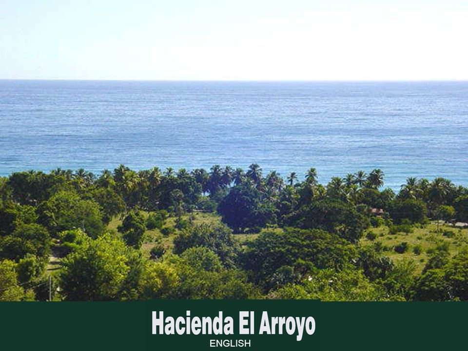 In front of La Hacienda, unblemished beaches line in their natural state.
