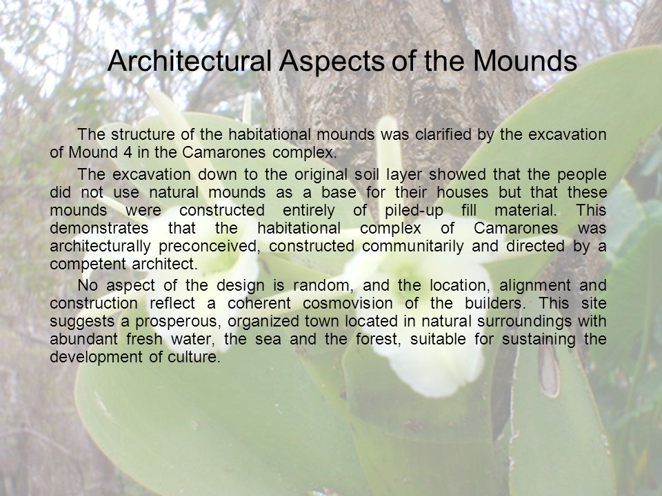 The structure of the habitational mounds was clarified by the excavation of Mound 4 in the Camarones complex.