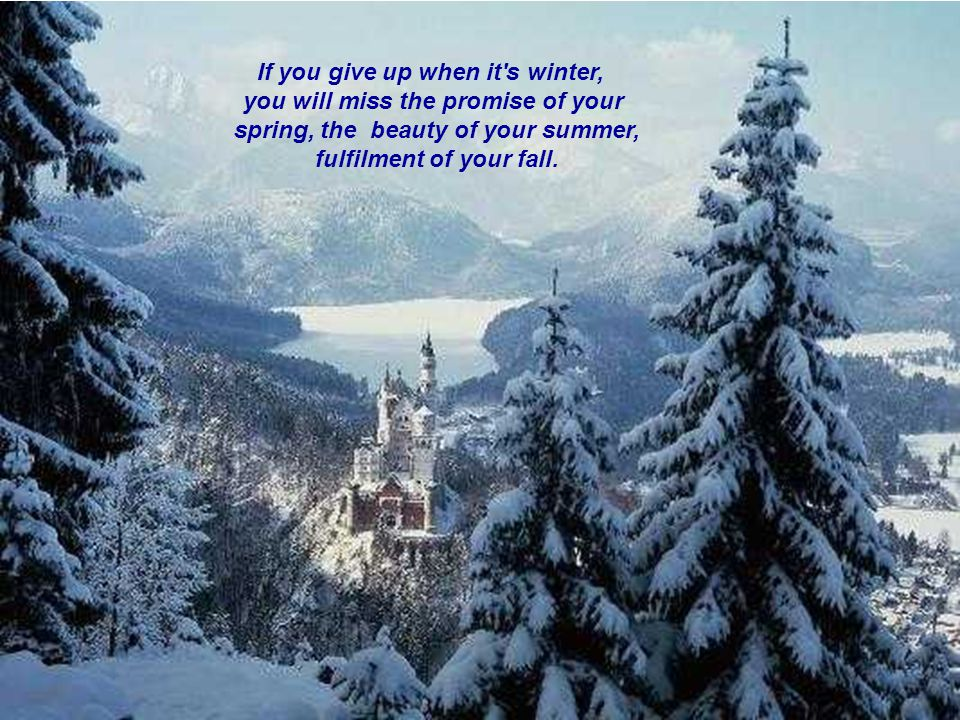If you give up when it's winter, you will miss the promise of your spring, the beauty of your summer, fulfilment of your fall.