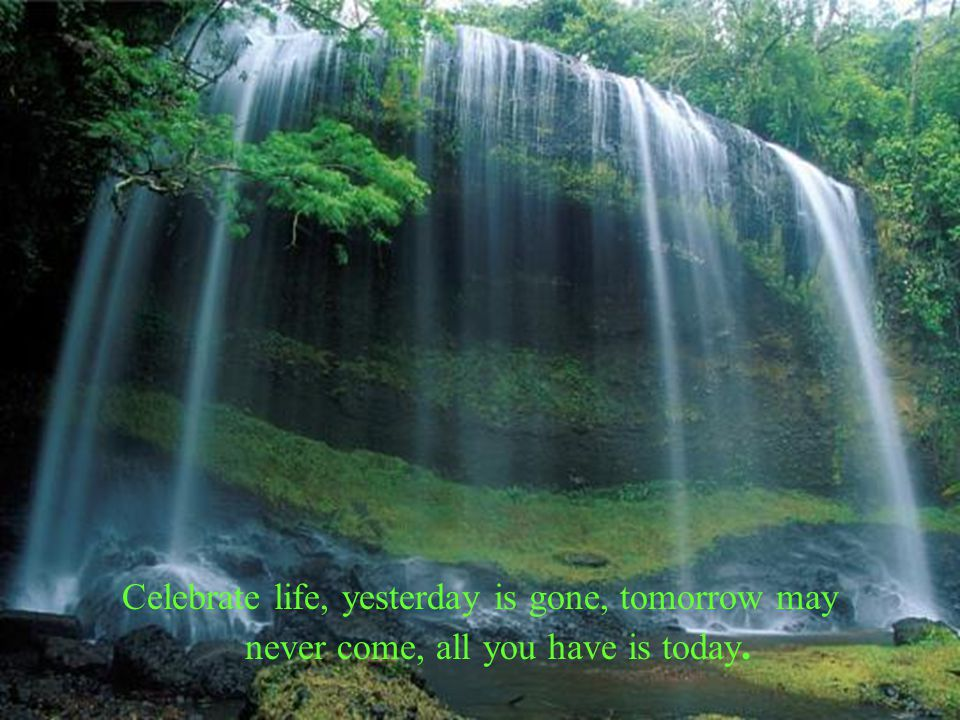 Celebrate life, yesterday is gone, tomorrow may never come, all you have is today.