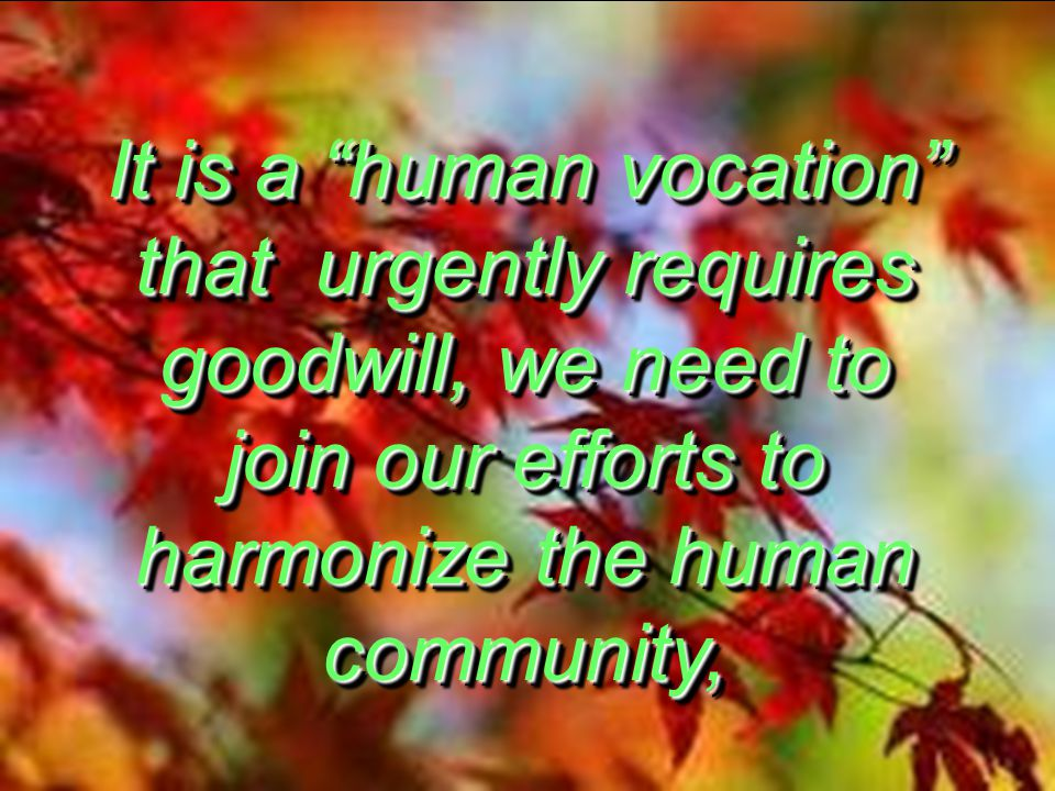 It is a human vocation that urgently requires goodwill, we need to join our efforts to harmonize the human community,