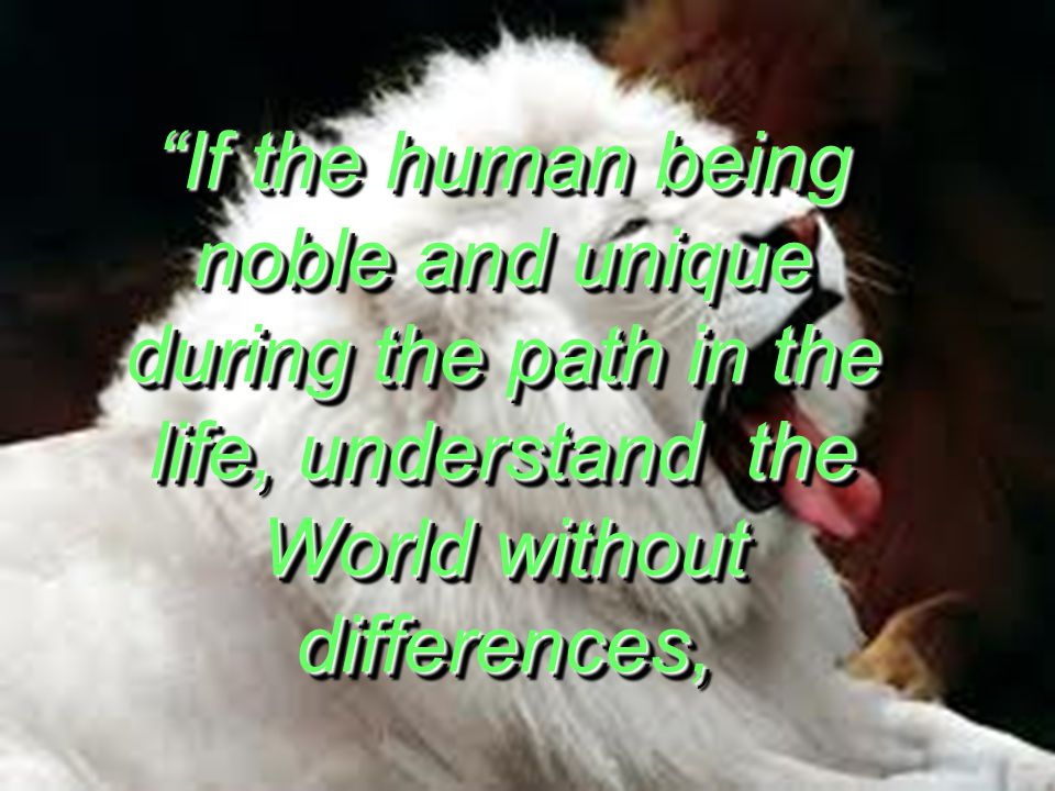 If the human being noble and unique during the path in the life, understand the World without differences,