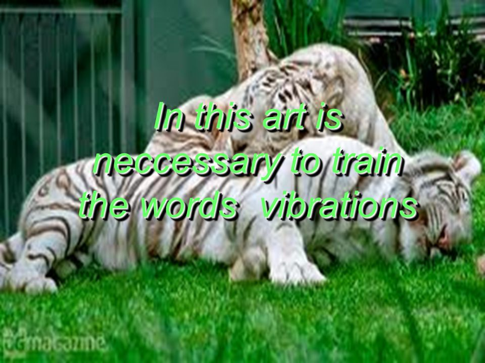 In this art is neccessary to train the words vibrations