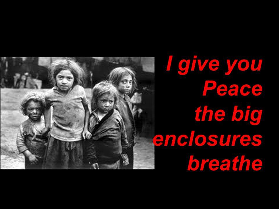 I give you Peace the big enclosures breathe