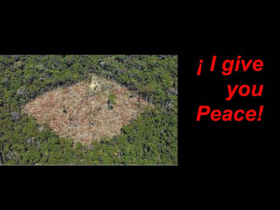 ¡ I give you Peace!