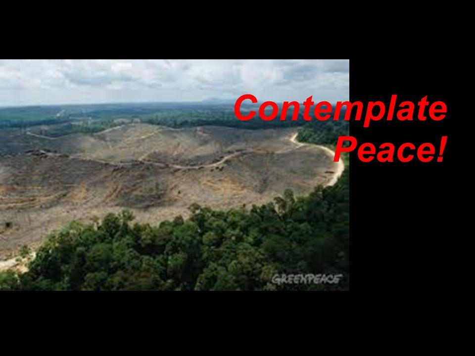 Contemplate Peace!