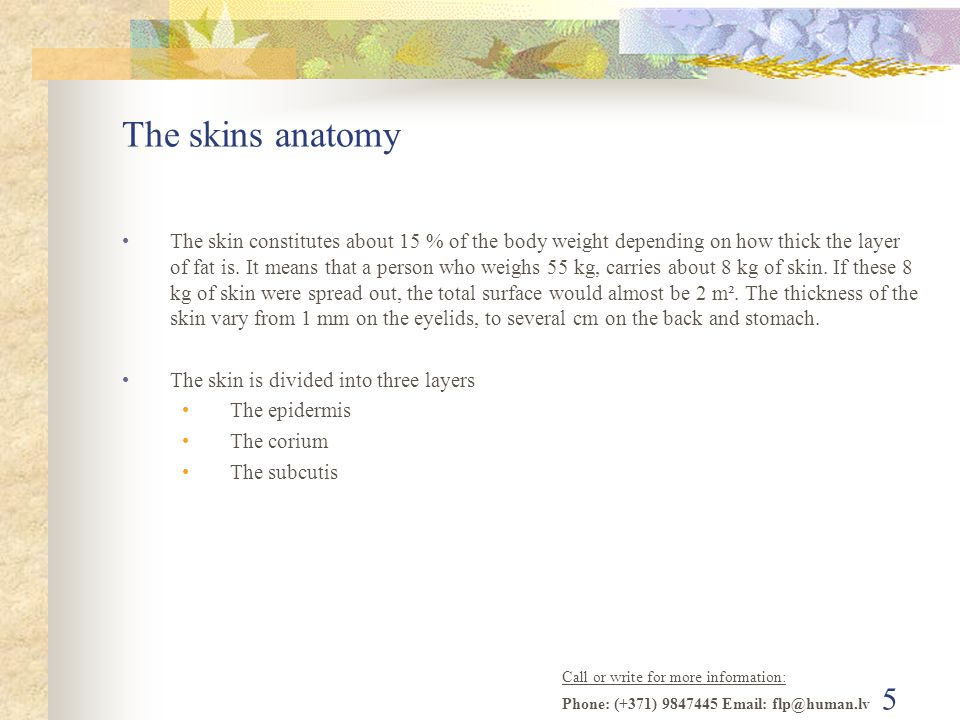 Call or write for more information: Phone: (+371) 9847445 Email: flp@human.lv 5 The skins anatomy The skin constitutes about 15 % of the body weight depending on how thick the layer of fat is.