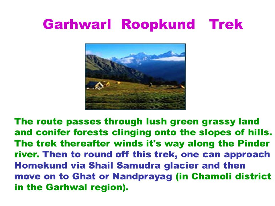 Garhwarl Roopkund Trek The route passes through lush green grassy land and conifer forests clinging onto the slopes of hills.