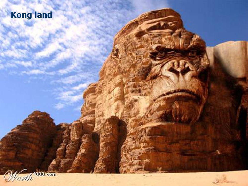 Kong land