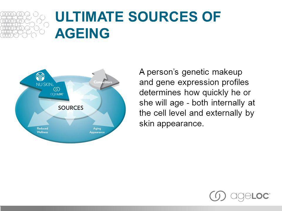 A persons genetic makeup and gene expression profiles determines how quickly he or she will age - both internally at the cell level and externally by
