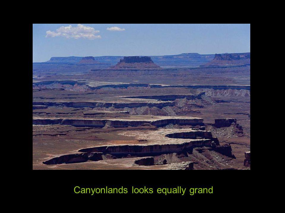 Grand CanyonBlack Canyon