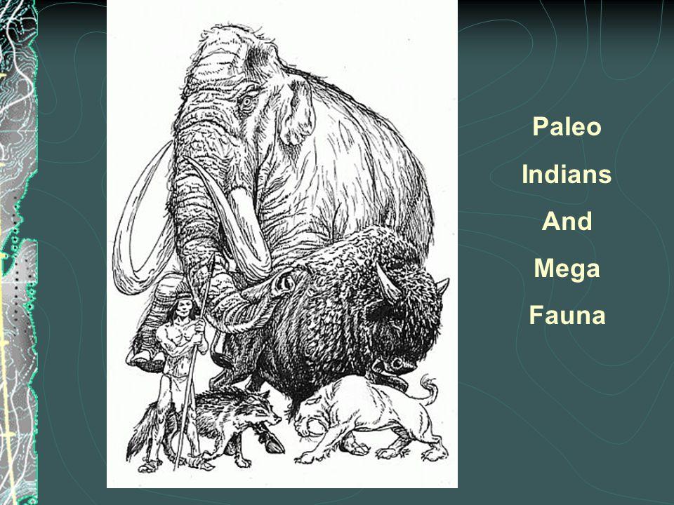 Paleo Indians And Mega Fauna