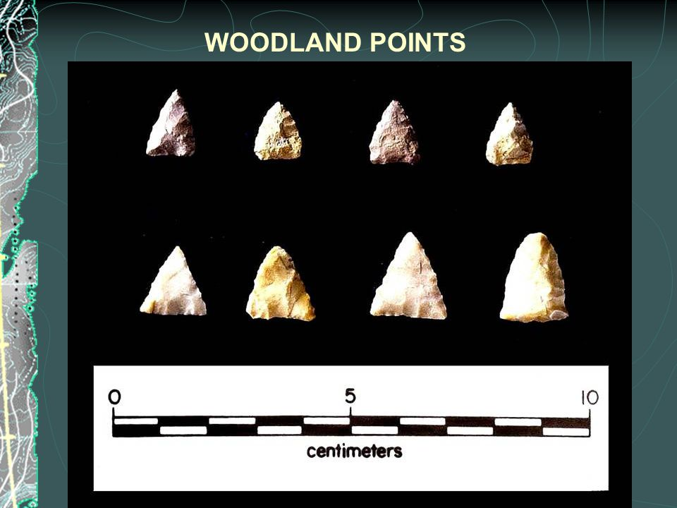 WOODLAND POINTS
