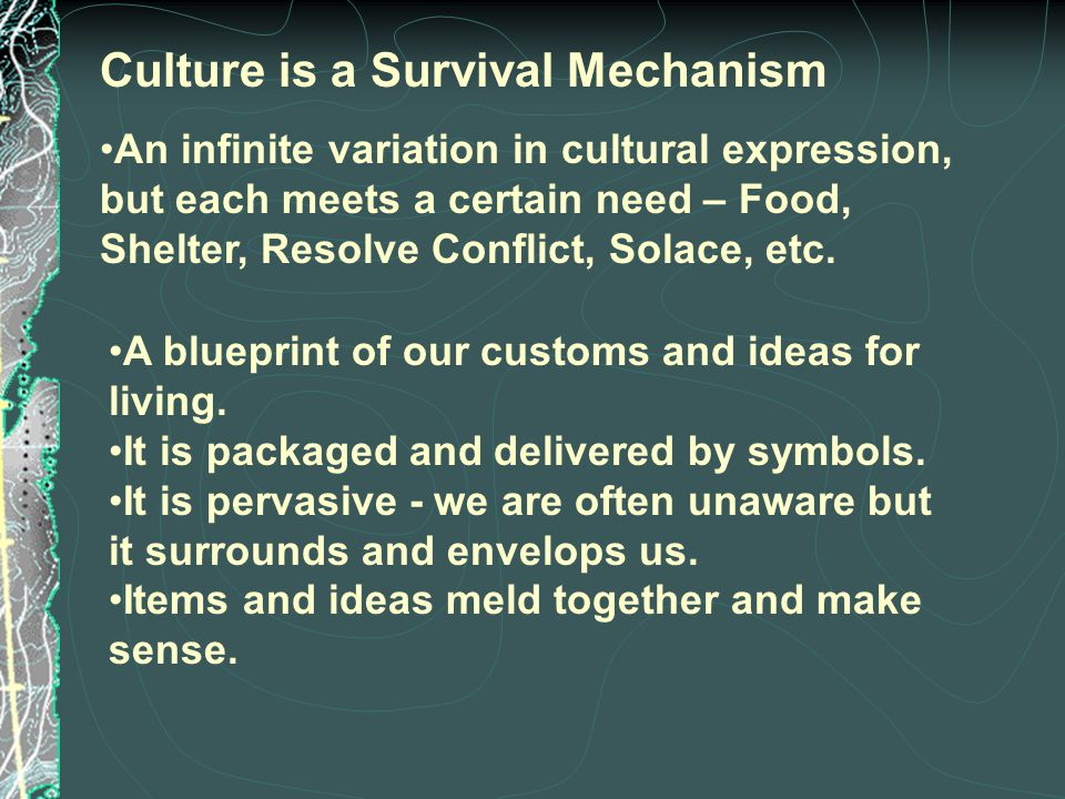Culture is a Survival Mechanism An infinite variation in cultural expression, but each meets a certain need – Food, Shelter, Resolve Conflict, Solace, etc.