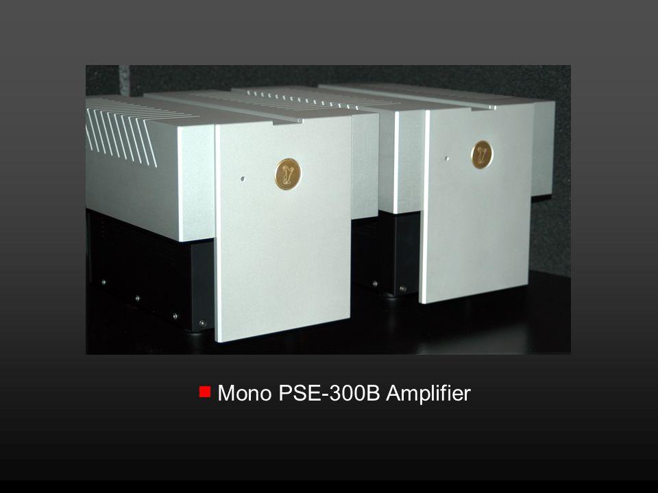 Mono PSE-300B Amplifier