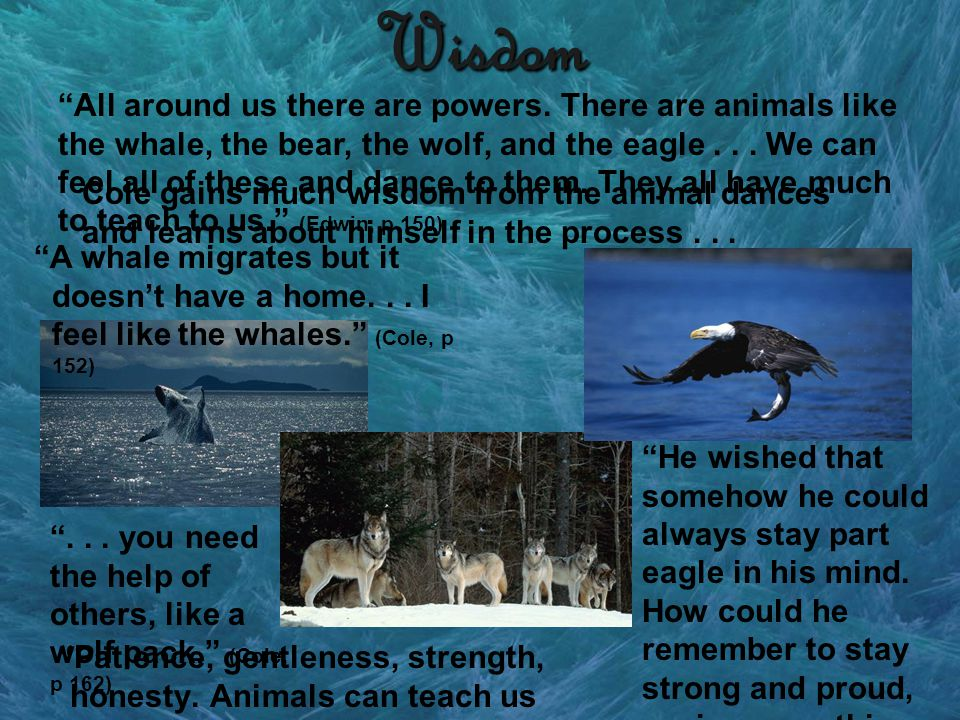 Wisdom All around us there are powers. There are animals like the whale, the bear, the wolf, and the eagle... We can feel all of these and dance to th