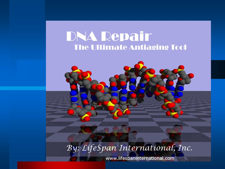 DNA Repair The Ultimate Antiaging Tool By: LifeSpan International, Inc.