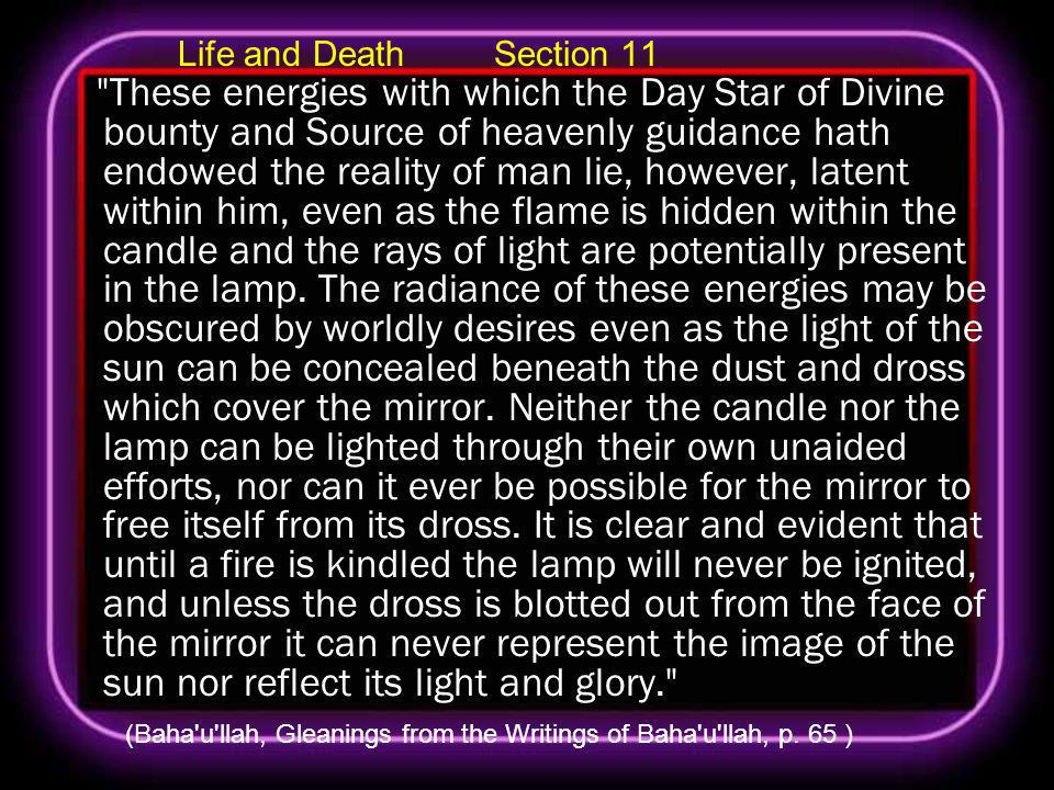 Life and Death Section 11