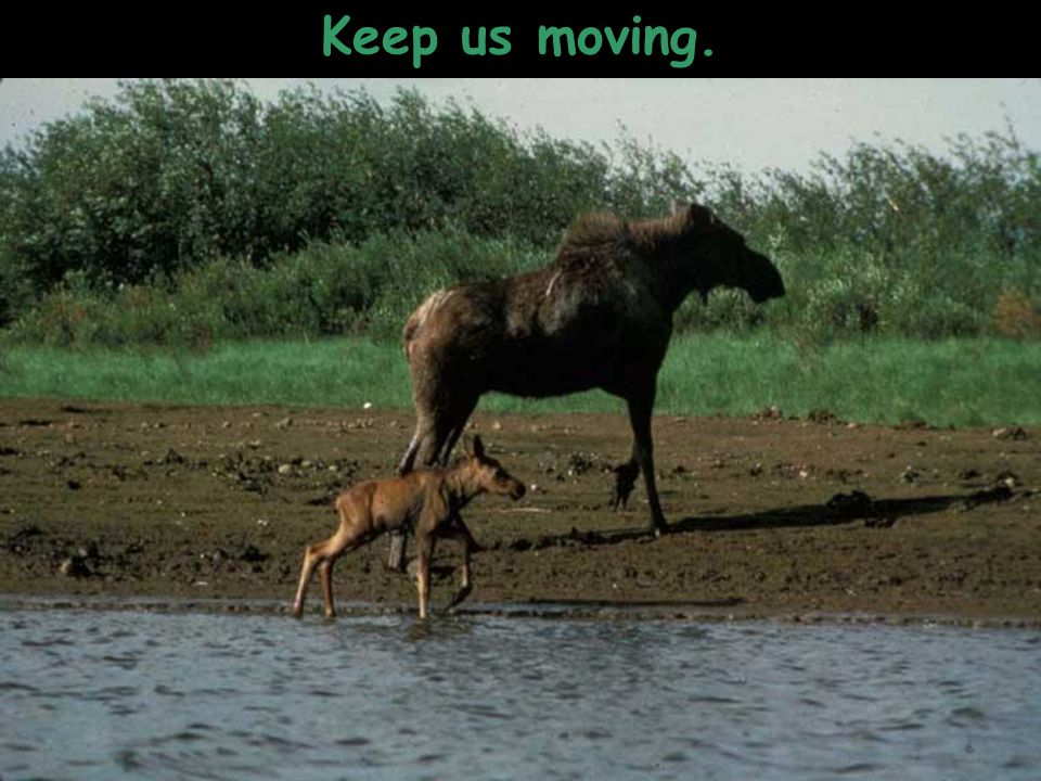 Keep us moving.