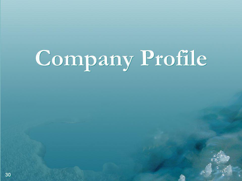 30 Company Profile