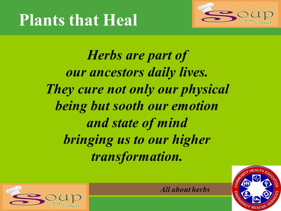All about herbs Herbs are part of our ancestors daily lives. They cure not only our physical being but sooth our emotion and state of mind bringing us
