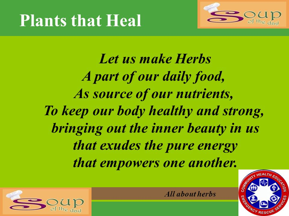 Plants that Heal All about herbs Let us make Herbs A part of our daily food, As source of our nutrients, To keep our body healthy and strong, bringing