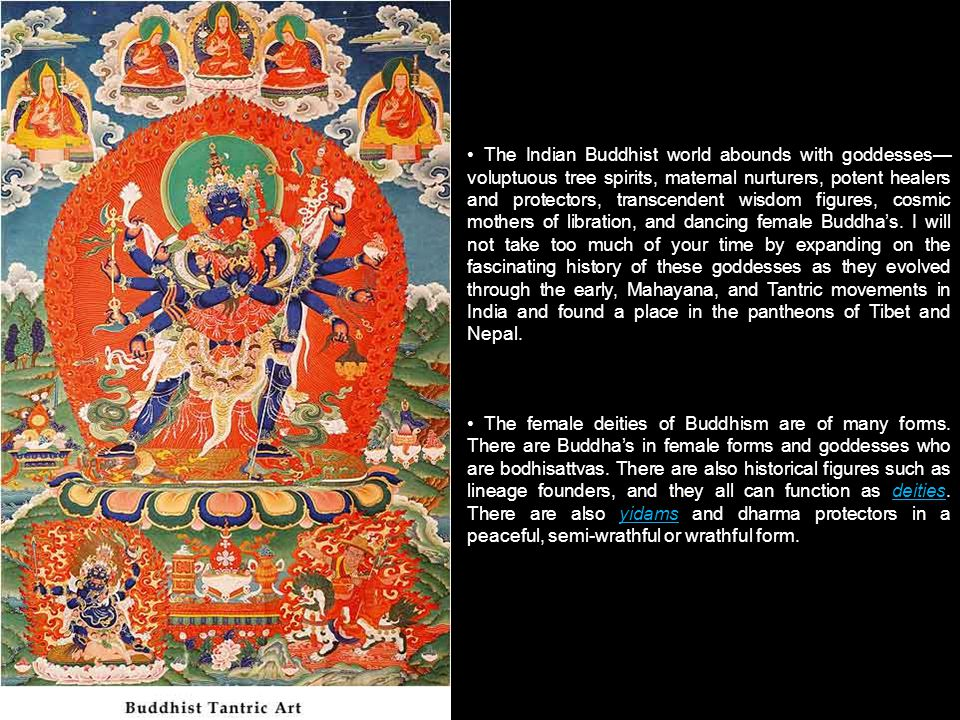The Indian Buddhist world abounds with goddesses voluptuous tree spirits, maternal nurturers, potent healers and protectors, transcendent wisdom figures, cosmic mothers of libration, and dancing female Buddhas.