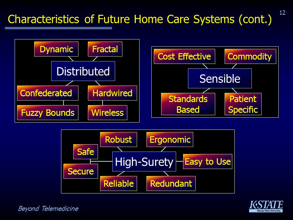 Beyond Telemedicine 12 Characteristics of Future Home Care Systems (cont.) High-Surety RedundantReliable Secure Ergonomic Distributed DynamicFractal ConfederatedHardwired WirelessFuzzy Bounds Sensible Cost Effective Standards Based Commodity Patient Specific Safe Robust Easy to Use
