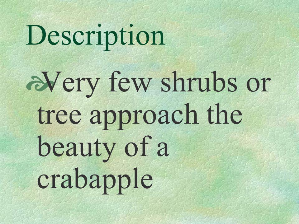 Use Specimen