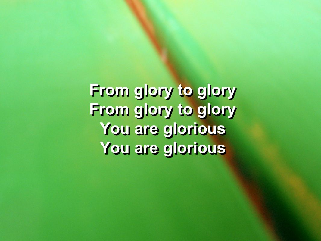 From glory to glory You are glorious From glory to glory You are glorious