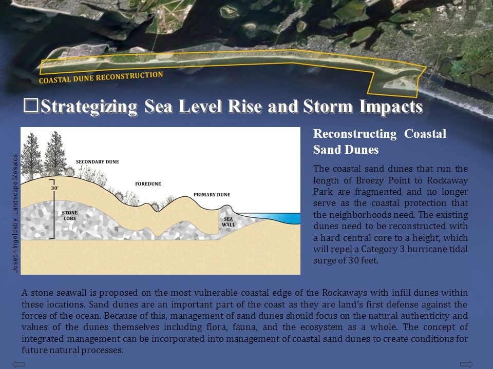 Strategizing Sea Level Rise and Storm Impacts The reestablishment of estuary functions including flood amelioration, bioremediation, fishery, reef building for natural estuary armoring are measures that can assist the city to reduce the impact of storms in future.