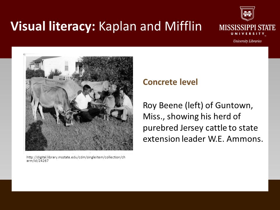Visual literacy: Kaplan and Mifflin http://digital.library.msstate.edu/cdm/singleitem/collection/ch arm/id/24267 Concrete level Roy Beene (left) of Guntown, Miss., showing his herd of purebred Jersey cattle to state extension leader W.E.