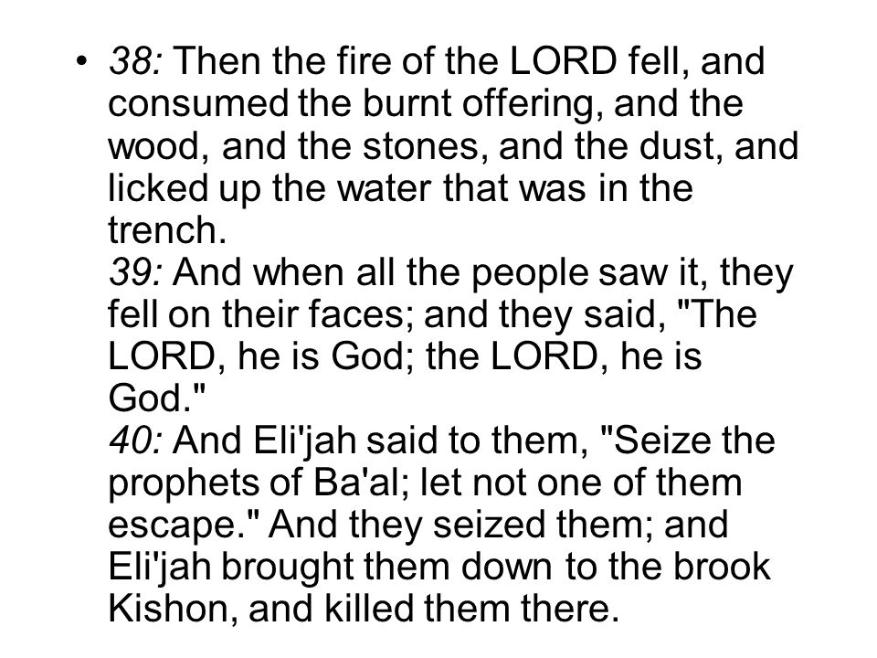 38: Then the fire of the LORD fell, and consumed the burnt offering, and the wood, and the stones, and the dust, and licked up the water that was in the trench.