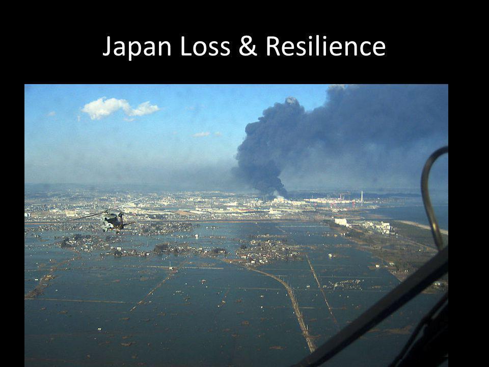 Japan Loss & Resilience