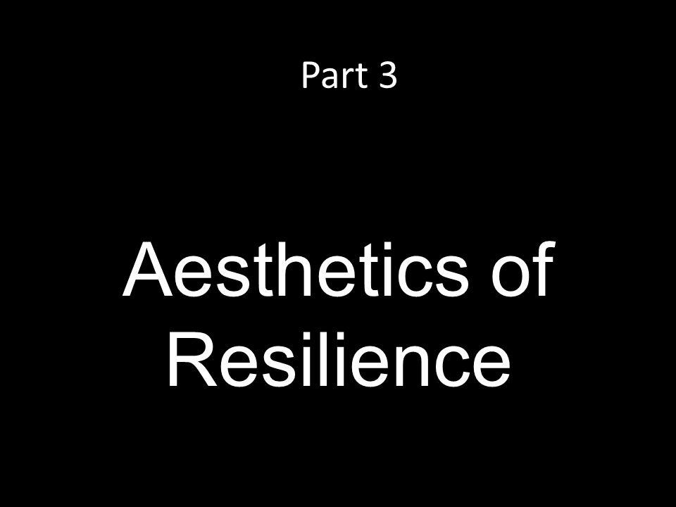 Part 3 Aesthetics of Resilience