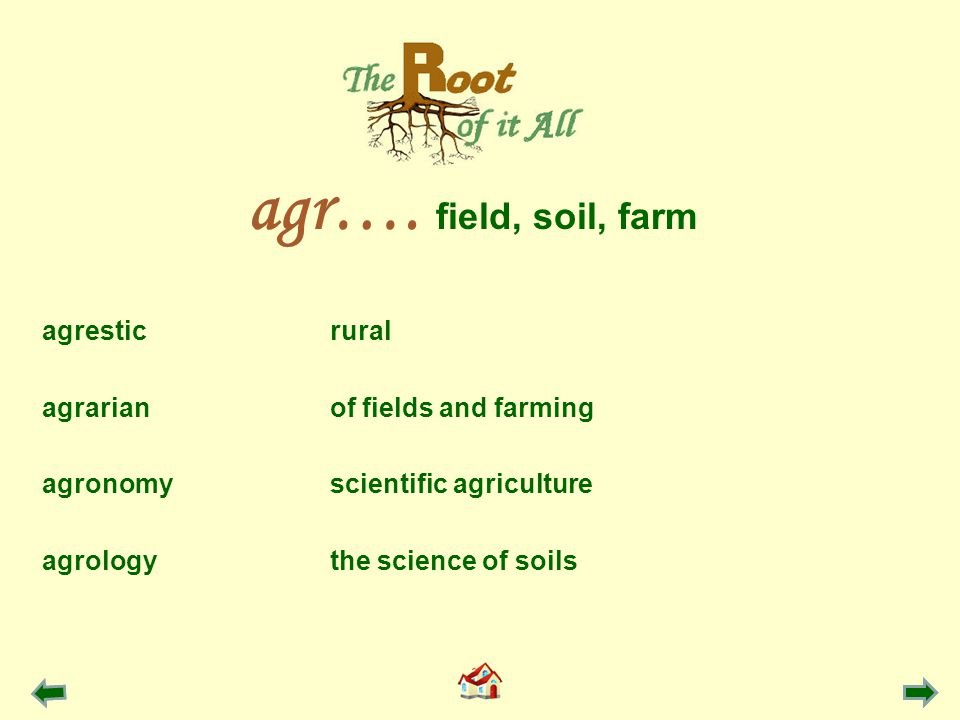agresticrural agrarianof fields and farming agronomyscientific agriculture agrologythe science of soils agr….