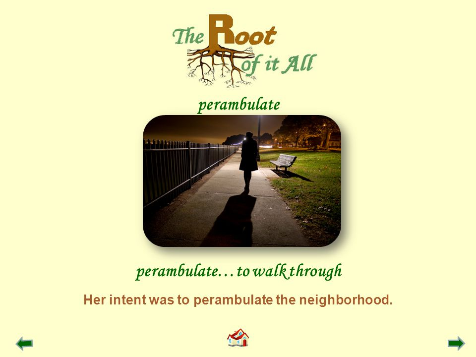 Her intent was to perambulate the neighborhood. perambulate…to walk through perambulate