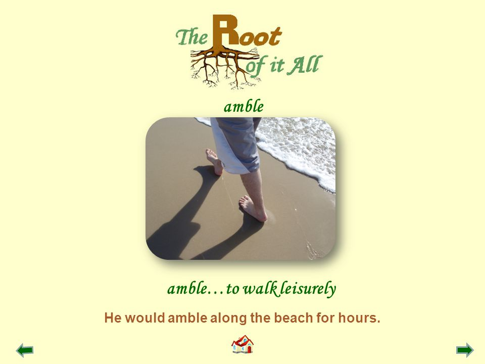 He would amble along the beach for hours. amble…to walk leisurely amble