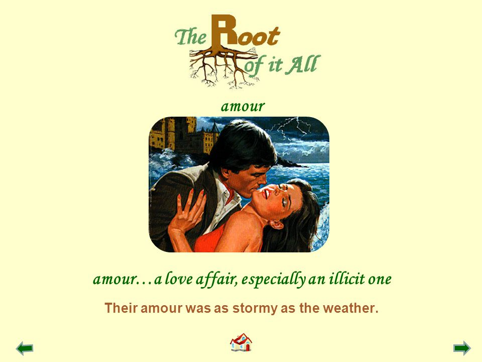 Their amour was as stormy as the weather. amour…a love affair, especially an illicit one amour