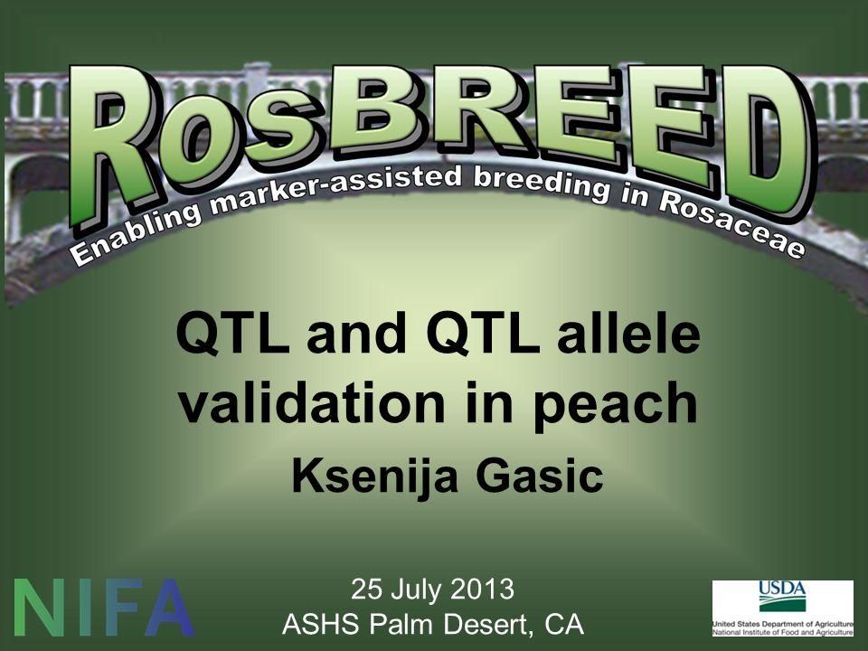 QTL and QTL allele validation in peach Ksenija Gasic 25 July 2013 ASHS Palm Desert, CA