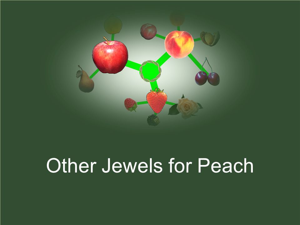 Other Jewels for Peach